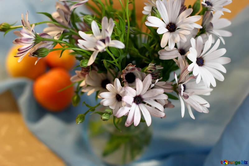 Naturaleza muerta con manzanas y flores №46852