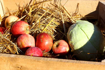 Natural apples in a wooden box on hay №47361