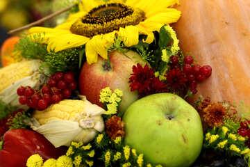 Autumn still-life composition №47031