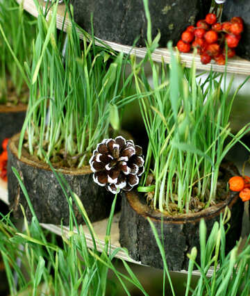 Christmas decorations from dry grass №47705