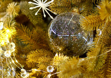 Transparent Christmas toy on a Christmas tree with bulbs №47772