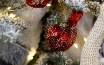 Christmas toys on the Christmas tree red bird №47688