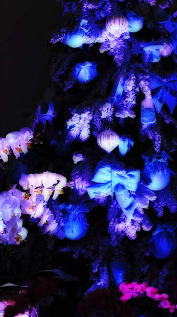 Blue Christmas background with toys on the Christmas tree №47663