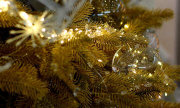 Christmas lights on a Christmas tree №47749