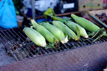 Corn on the grill maize №47481
