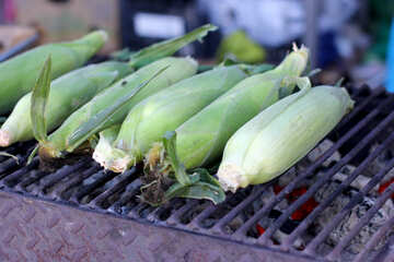 Corn on the grill maize №47482