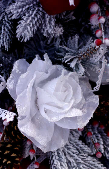 Christmas decoration flower on the tree №47568