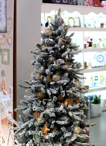 Christmas tree in the store №47655