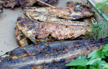 Grilled fish №47514