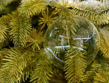 Glas Weihnachtskugel auf einem Zweig eines Weihnachtsbaums №47719