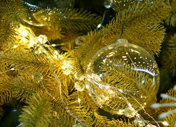 Glass Christmas ball on a branch of a Christmas tree №47715