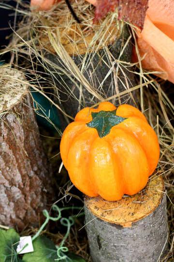 Pumpkin for Halloween №47242