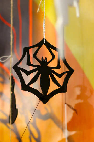 Spider on Halloween №47259