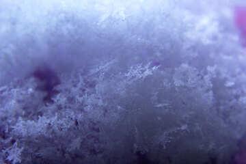 Neve macro №47965
