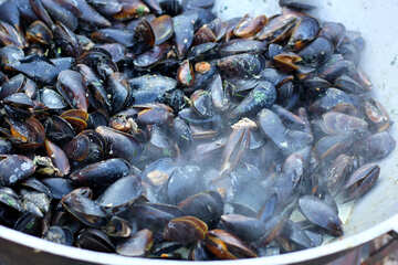 Mussels fried №47509