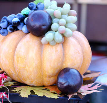 Pumpkin with grapes №47345