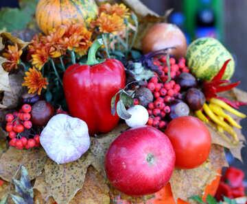 Autumn vegetables №47349