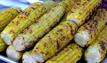 Corn grill maize №47479