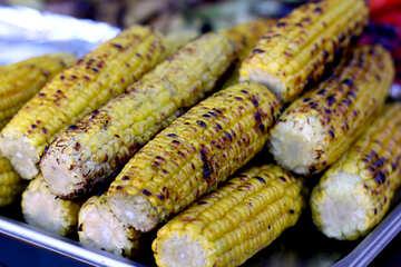 Corn grill maize №47480
