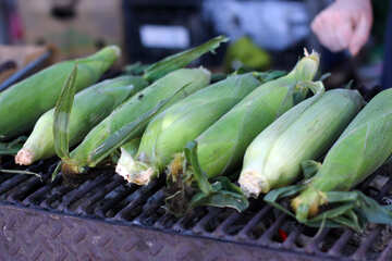 Corn on the grill maize №47483