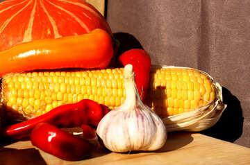 Pumpkins and fall vegetables №47342
