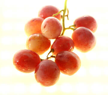 Pink grape isolated on white background №47269