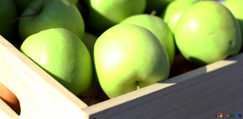 Green apples in a wooden box №47369