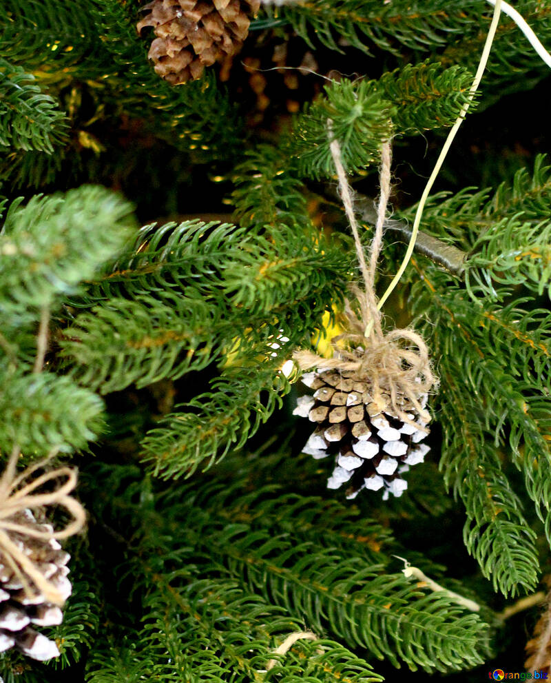 Christmas wreath decoration on a Christmas tree №47816