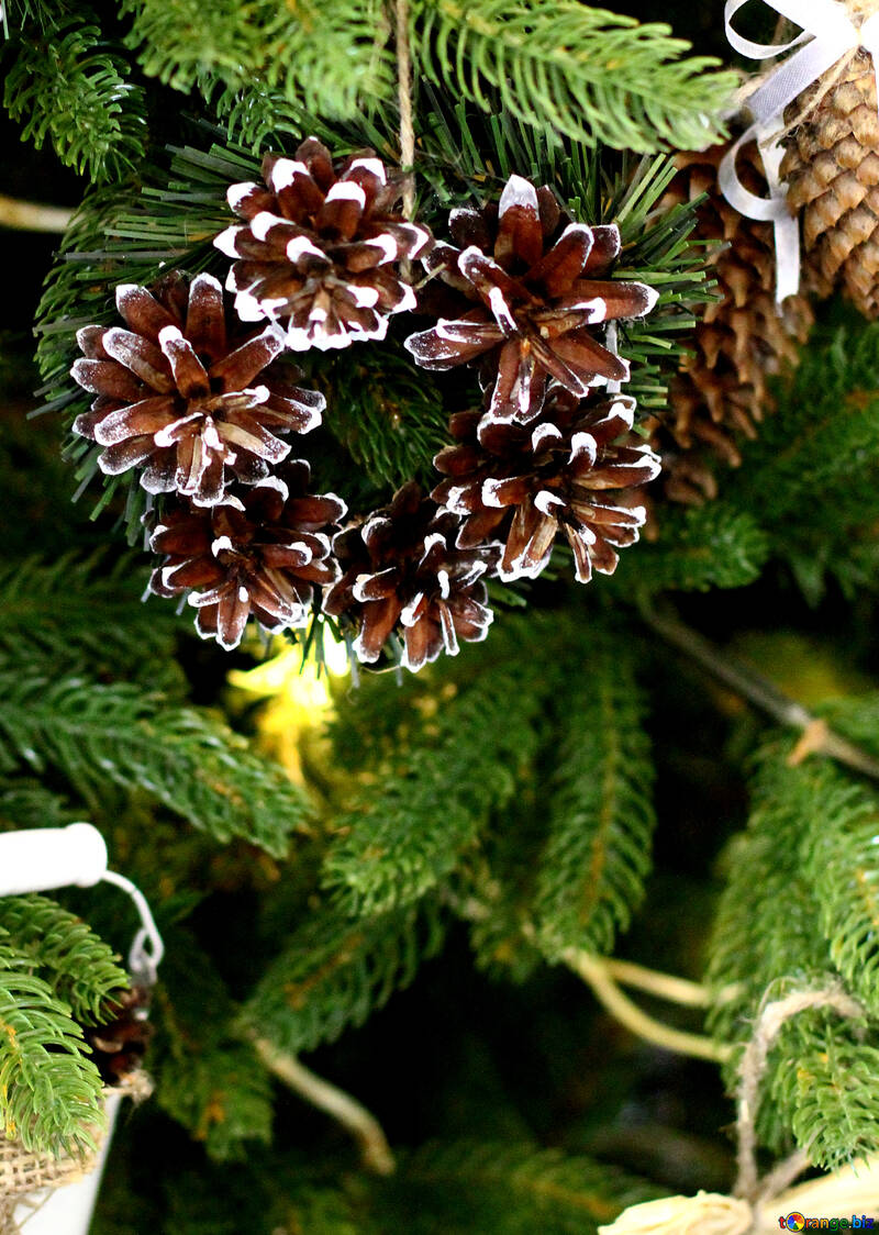 Christmas wreath decoration on a Christmas tree №47817