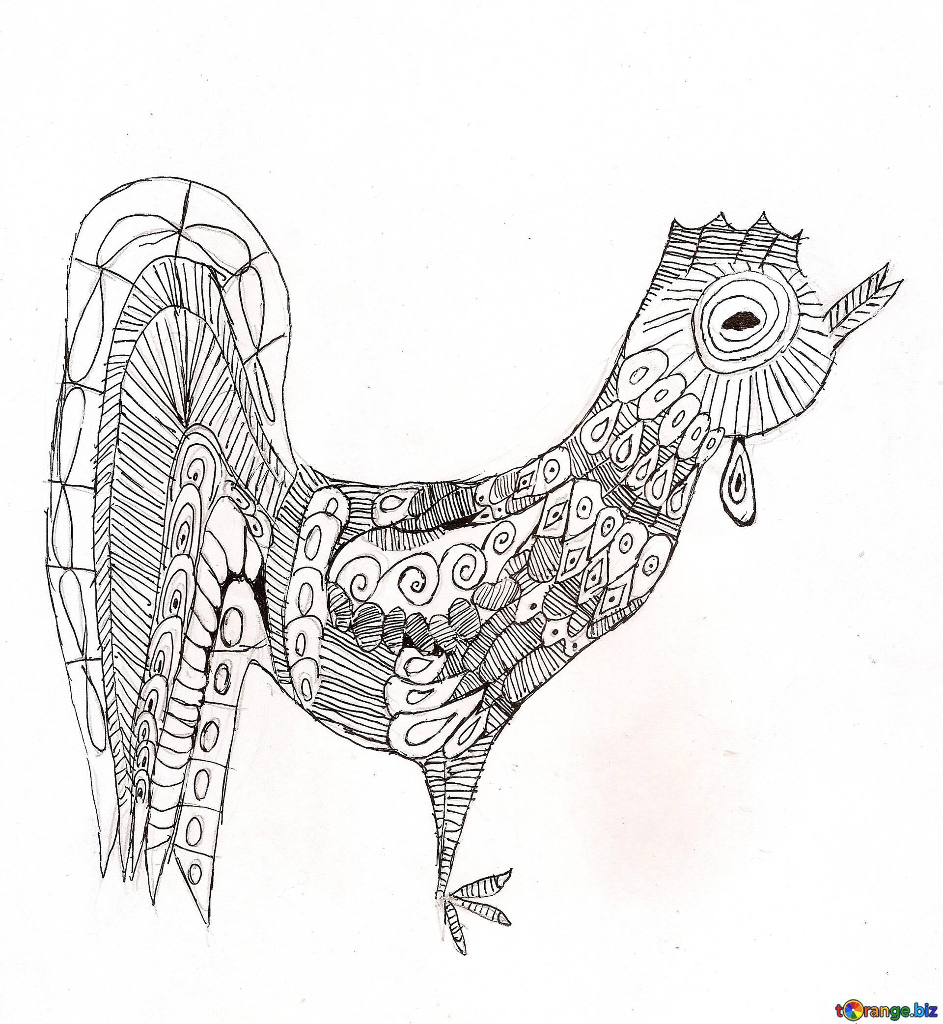 Dibujos los niños de dibujo para colorear un gallo para adultos año ...