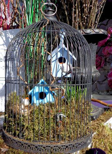 Decorative bird cage №48507