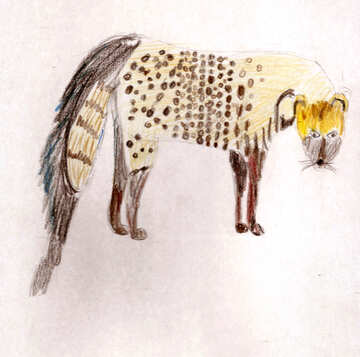 Children`s drawing African civet №48237