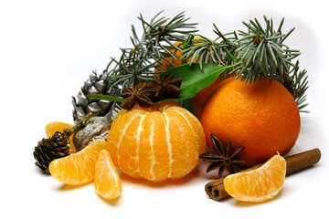 Christmas mandarins in the composition №48210