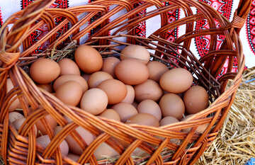 Chicken eggs in a basket №48402