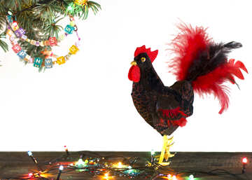 Red Rooster symbol of the year 2017 isolated on a black background №48015