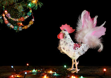 White rooster symbol of the year 2017 isolated on a black background №48012