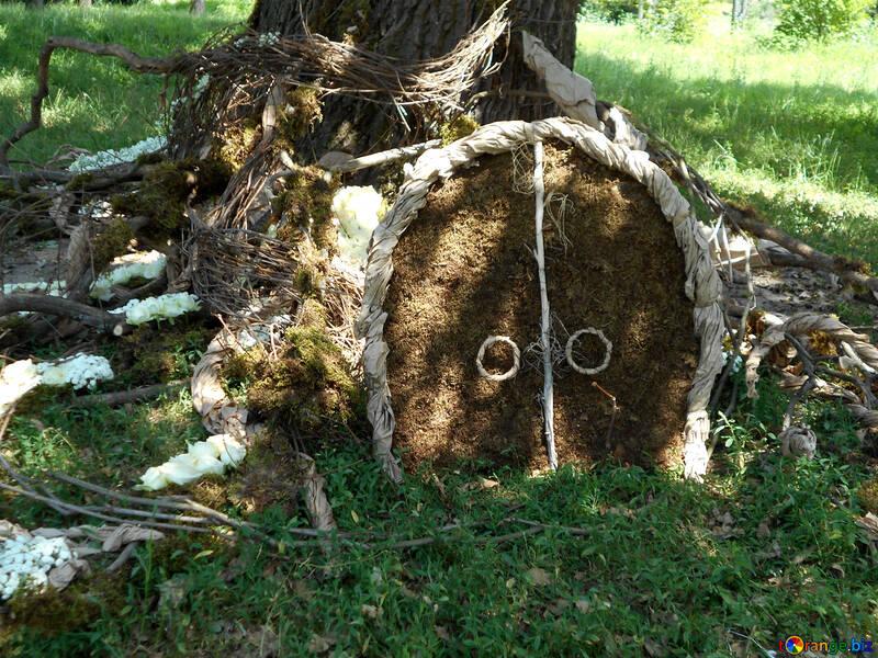 Le paysage autour de l`arbre pour la photo de mariage portes de shoot dans le trou №48449