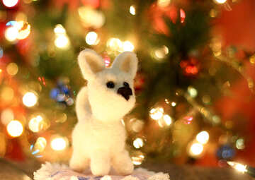 Symbol of new years 2018 white husky dog. New years greetings background. Fancy handmade toy from wool on bokeh Christmas background. Place for insert logo or write text. Copyspace for congratulations. №49642