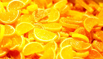Orange and lemon slices №49310