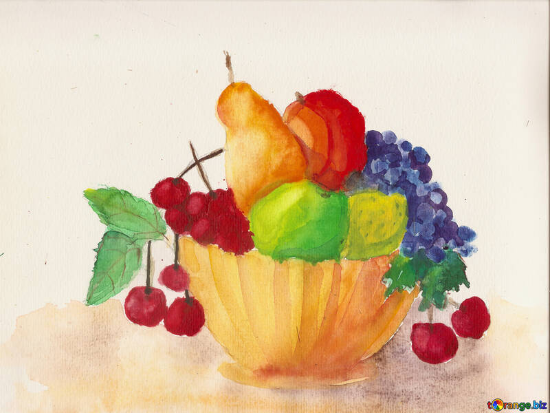 Drawing painted watercolor still life with fruit №49238
