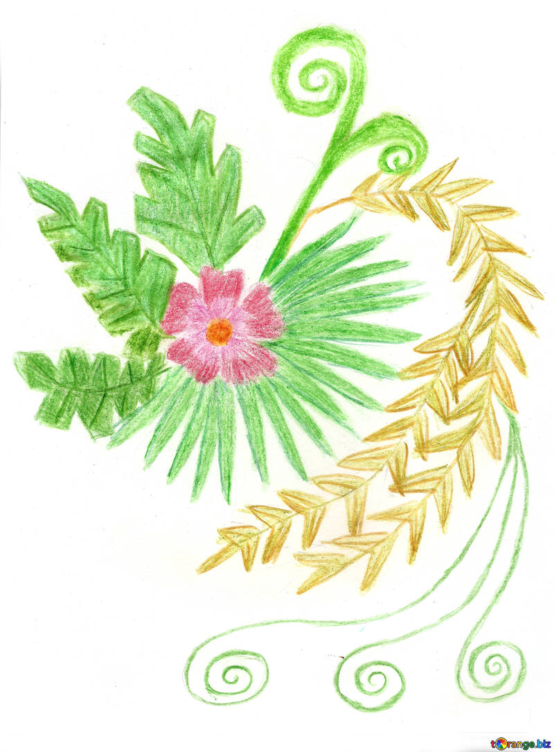 Helecho de flores №49256