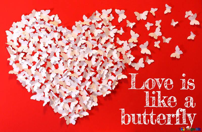 Love is like a butterfly. №49682