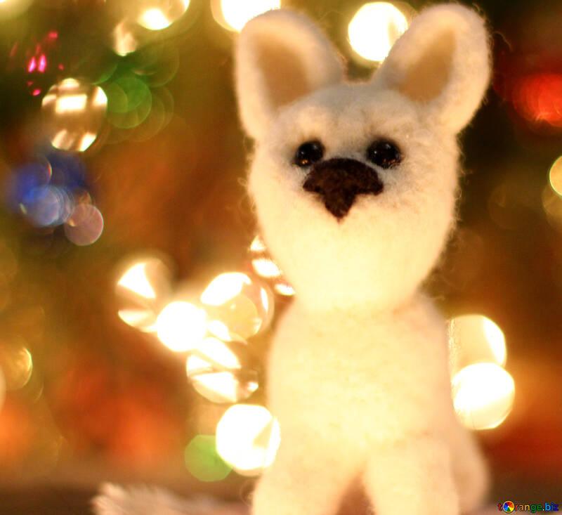 Symbol des weißen husky Hundes des neuen Jahres 2018.  №49644