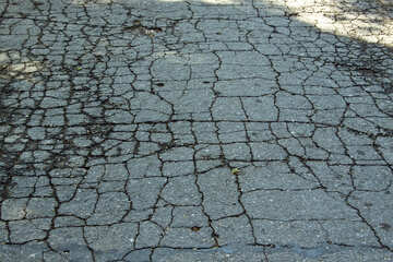 Cracked  asphalt №5672
