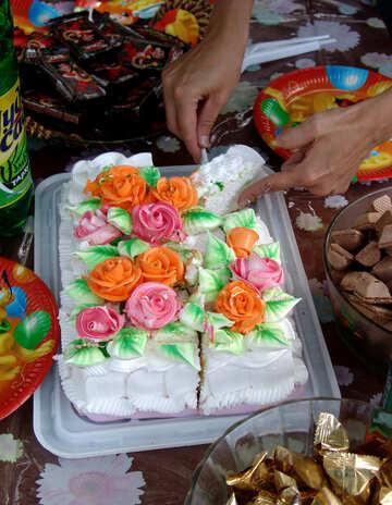 Schneiden Sie den Kuchen №5851