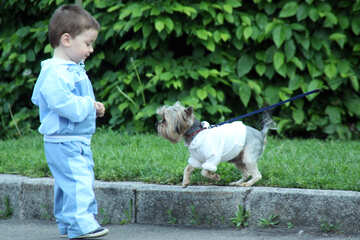 Child  and  dog №5107
