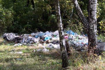 Мусорная свалка. Горы мусора после пикников. №5531