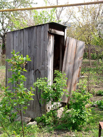 Outhouse.Rustic wooden toilet. №5414