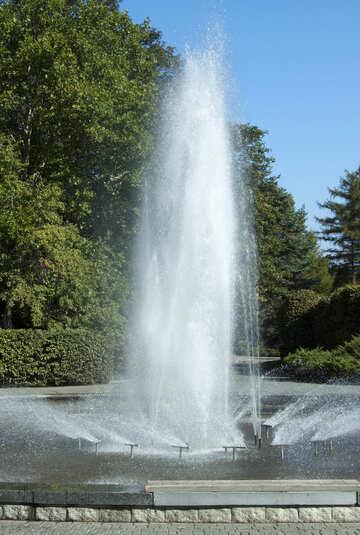 Fuente parque. №5637