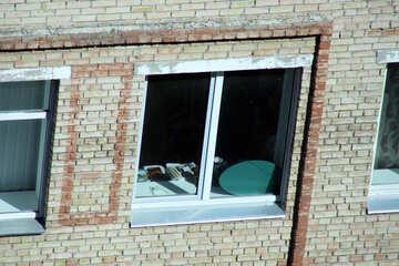 Подсмотренное окно. Хлам на подоконнике. №5741